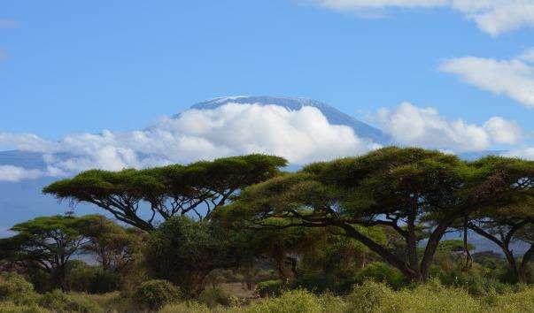 Національний парк Амбоселі