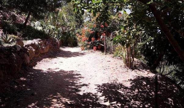 Ботанічний парк Криту
