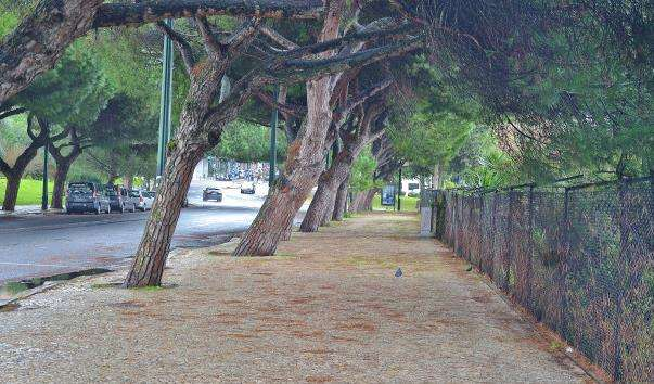 Парк Едуарда VII