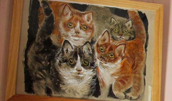 Музей кішки