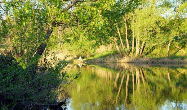 Річка Камянка
