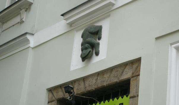 Будинок У зеленої жаби