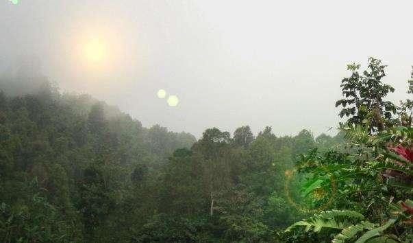 Гора Батукау