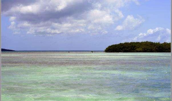Саманский затока