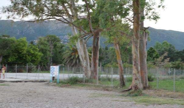 Селище Dassia