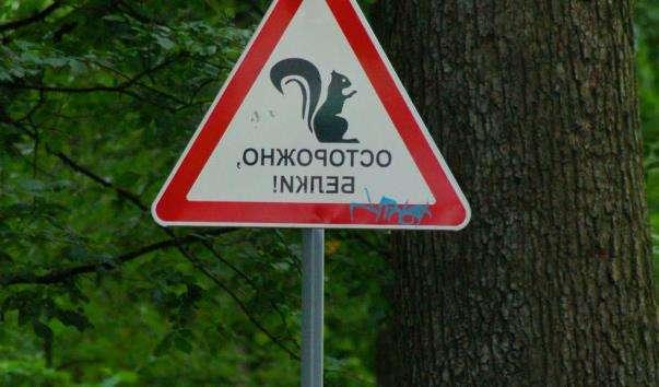 Центральний парк культури і відпочинку імені Кірова С. М.