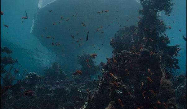Підводна обсерваторія в Ейлаті