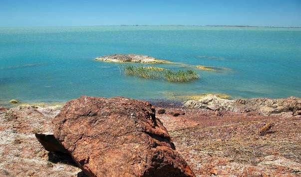 Озеро Балхаш