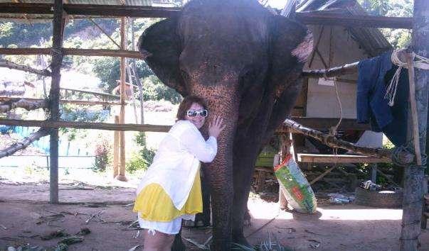 Слонова ферма