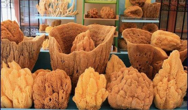 Магазин-музей морських губок
