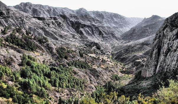Національний парк Гарахонай