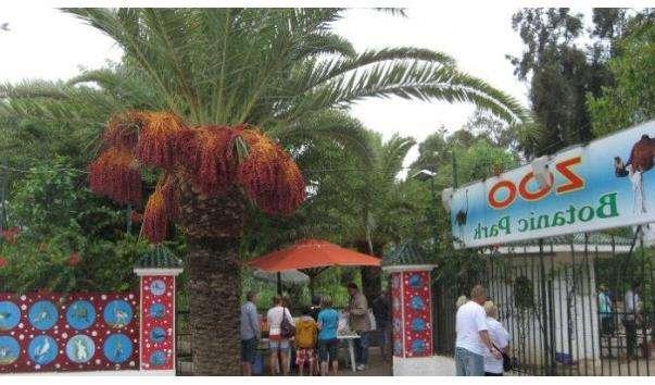 Зоопарк Oasis